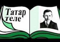 В РТ стремительно растет число желающих посещать курсы татарского языка