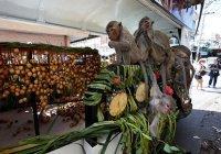 3000 голодных обезьян разорили 2 деревни в Таиланде