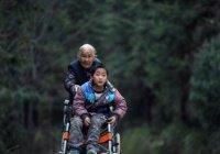 76-летняя китаянка каждый день проходит пешком 24 км ради внука
