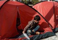 Военные России вернули в Сирию 10 тыс. беженцев