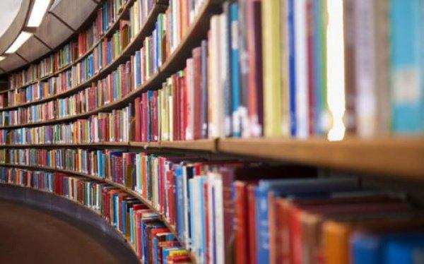 Место для необычной библиотеки нашли в здании старой кирпичной фабрики