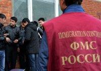 В Петербурге подсчитали число совершенных мигрантами преступлений