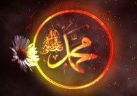 Правда ли, что Пророк (ﷺ) никогда не смеялся, а только улыбался?