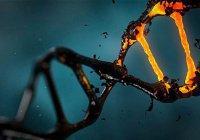 В Китае начали массово редактировать ДНК людей