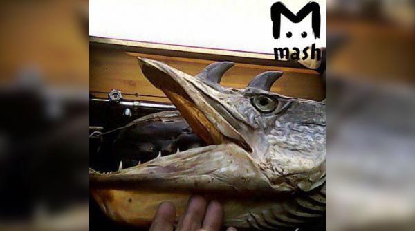 Рыбак изОмской области выловил вИртыше 2-х рыб срогами