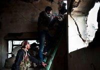 Эксперт назвал число боевиков ИГИЛ, оставшихся в Сирии