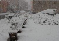 Впервые за 50 лет Марокко накрыло снегом