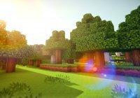 Компьютерная игра спасла самый крупный реликтовый лес от вымирания (ВИДЕО)