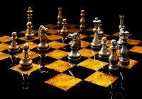 Ученые: Женщины играют в шахматы не хуже мужчин