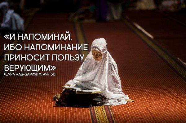 «И напоминай, ибо напоминание приносит пользу верующим»