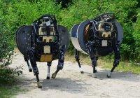 У военных роботов появятся собственные психологи