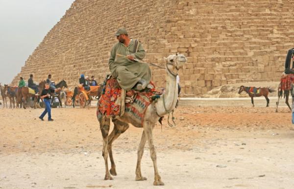 Территория вокруг египетских пирамид будет значительно преобразована.