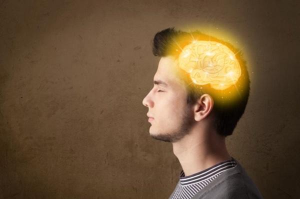 В результате мутаций нервные клетки головного мозга, в первую очередь, человекоподобных существ и других млекопитающих научились обмениваться информацией