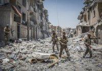 Правозащитники призвали сирийцев не возвращаться на родину