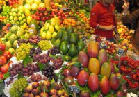 Ученые разработали съедобные чипы для фруктов