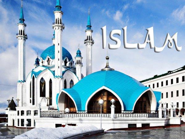 «Признаком хорошего исповедания ислама человеком является его отказ от того, что его не касается»