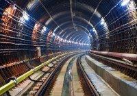 В Москве машинист спас упавшую в метро на рельсы женщину