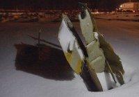 Стали известны наиболее вероятные причины крушения Ан-148