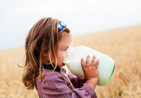 Медики: Парное молоко опасно