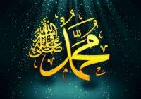 Как прошли последние дни пророка Мухаммада (ﷺ) в этом мире