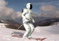 В Корее впервые состоялись лыжные соревнования для роботов (ВИДЕО)