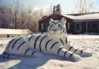 В России пенсионер слепил из снега зоопарк
