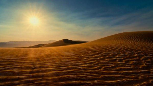 Мутталиб взял у того человека верблюда в долг и отправился в путь в сторону Медины.