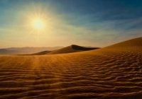 Участником каких событий стал Абдул-Муталлиб – дед Пророка Мухаммада (ﷺ)?