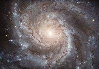 Телескоп «Хаббл» снял далекую спиральную галактику