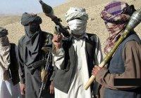 «Талибан» опубликовал обращение к американскому народу