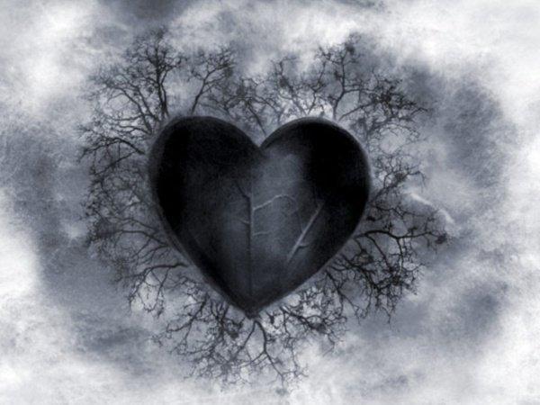Сердце чернеет из-за 4-х вещей…