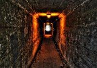 Илону Маску разрешили прорыть тоннель под Вашингтоном
