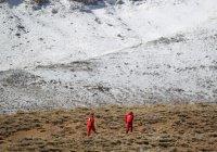 В Иране нашли разбившийся самолет