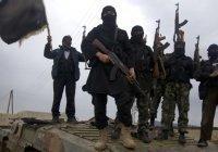 Стало известно, куда «перебежали остатки ИГИЛ»