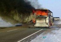 Стала известная причина пожара в автобусе, где погибли 52 узбекистанца