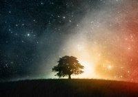 Сон, который предсказал рождение пророка