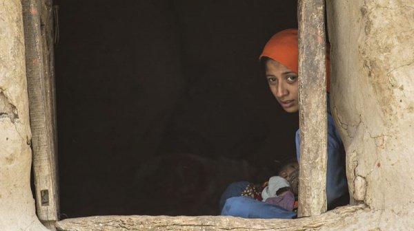 В соответствии с данными ЮНИСЕФ, наименьшие шансы на выживание имеют новорожденные в 2-х мусульманских странах, Пакистане и Афганистане