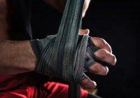 Братья Кадыровы ответили на вызов чемпиона по кикбоксингу (ВИДЕО)