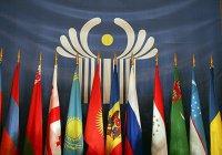 Эксперты стран СНГ объединятся для противодействия экстремизму