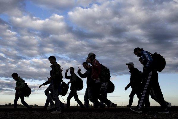 Королевство взяло на себя обязательства принять 8 тысяч жителей Сирии в 2016–2019 годах