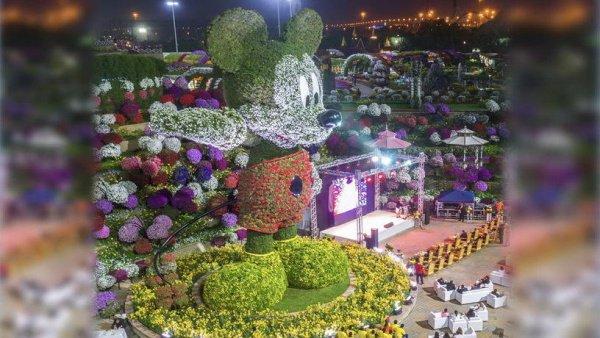 На изготовление объекта потребовалось 100 тыс. цветов и растений