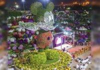 Рекордную цветочную скульптуру Микки Мауса создали в Дубае