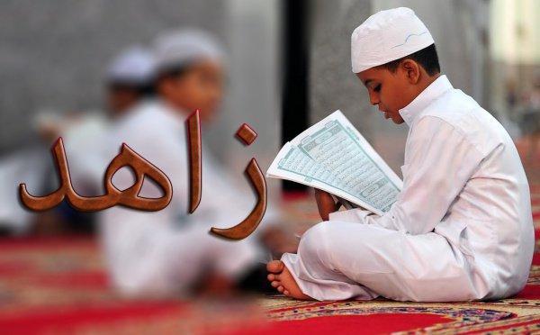 Захид – мужское имя арабского происхождения