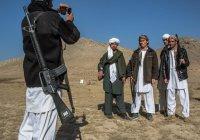 Афганистан хочет признать «Талибан» политической группой