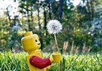 LEGO будет производить экокубики