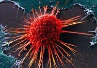 Ученые нашли способ вылечить смертоносный рак