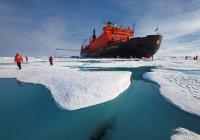 Аномальная жара установилась на Северном полюсе