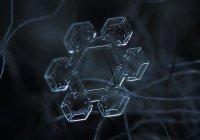 Чудеса Создателя: снежинки в макросъемке