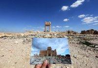 Судьба музеев на Ближнем Востоке