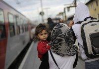 В Германии оценили масштабы исламофобии